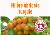 Les abricots des plateaux de Malatya en Turquie