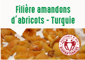 Les amandons doux d'abricots des plateaux de Malatya en Turquie