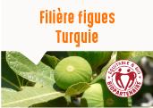 Figues séchées des montagnes de Nazilli en Turquie