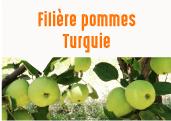Les pommes séchées des plaines d'Afyon en Turquie