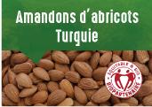 Amandons d'abricots  des plateaux de Malatya enTurquie