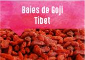 Baies de Goji des hauts plateaux du Qinghai au Tibet