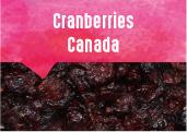 Cranberries des plaines du Saint Laurent au Québec