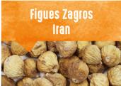 Figues Zagros des monts Zagros en Iran