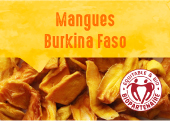 Mangues séchées des jardins de Banfora au Burkina Faso