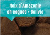 Noix d'Amazonie en coques <br /> des forêts de Cobija en Bolivie