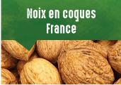 Noix en coques du Périgord