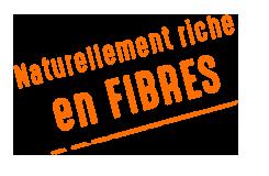 riche en fibres