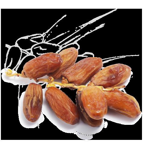 Dattes Deglet Nour Premium du sud Israëlien