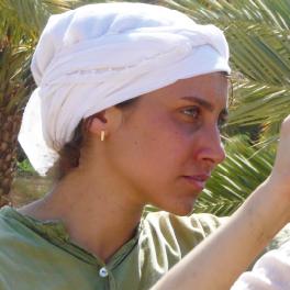 Récolte des dattes à Samar dans le Sud Israëlien